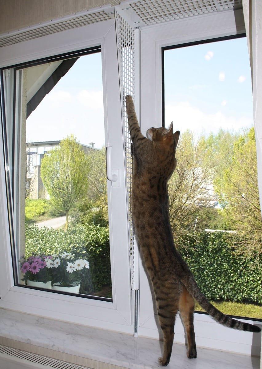 Kippfensterschutz Fensterschutzgitter Katzenschutzgitter Ohne