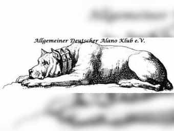 Der Allgemeine Deutsche Alano Klub