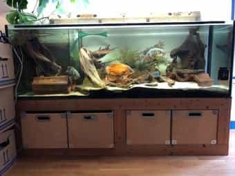 Aquarium 180 x 60 x