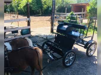 Kutsche Pony super leicht