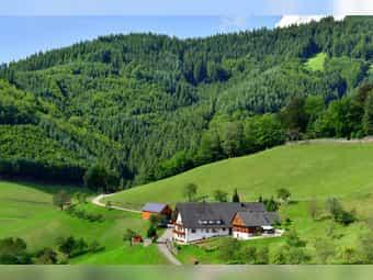 Ferienhaus - Ferienwohnungen Müllerbauernhof im Schwarzwald