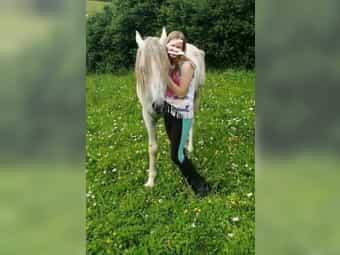 Suche Reitbeteiligung Reiter sucht Pferd