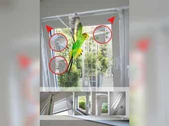 Kippfensterschutz für Vögel OHNE BOHREN