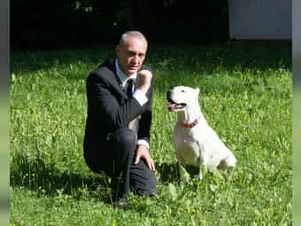 Private Hundebetreuung Dog Sitting