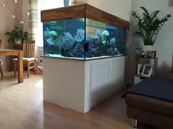 Großes Aquarium 700L mit schönem