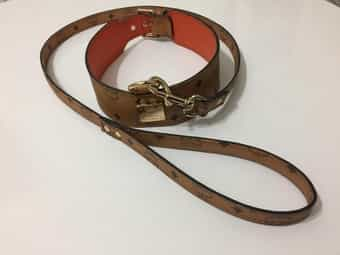 Mcm Hunde Halsband Leder dog