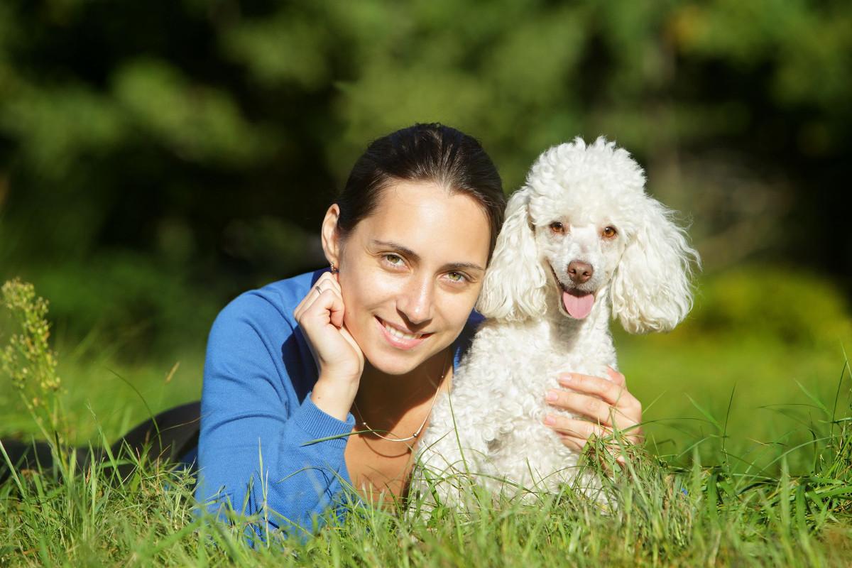 Hunde Für Allergiker Fünf Hunderassen Im überblick Deinetierwelt