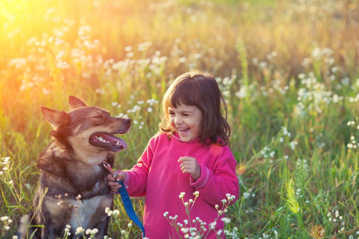 Kinder Und Tiere Ein Gutes Team