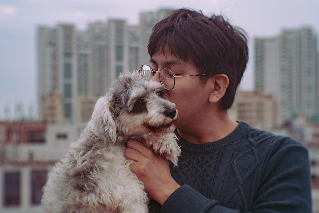 Coronavirus China Ordnet Schlachtung Von Haustieren An