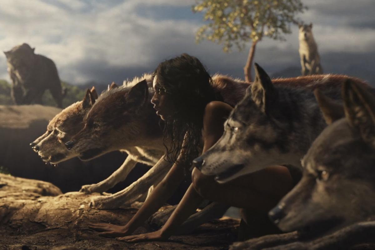 Tierfilme Netflix