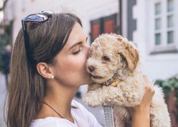Welthundetag: Warum lieben wir Hunde eigentlich so sehr?